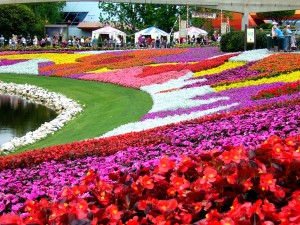 Epcot Flower and Garden Show