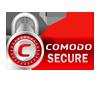 Trust Logo Wildcard SSL